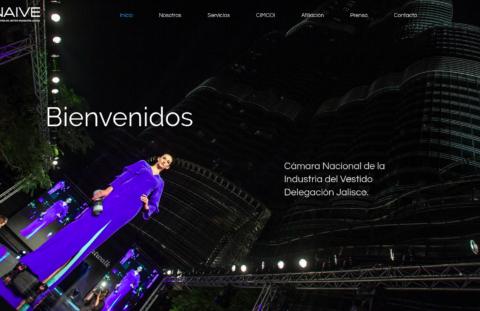 Sitio Web Canaive